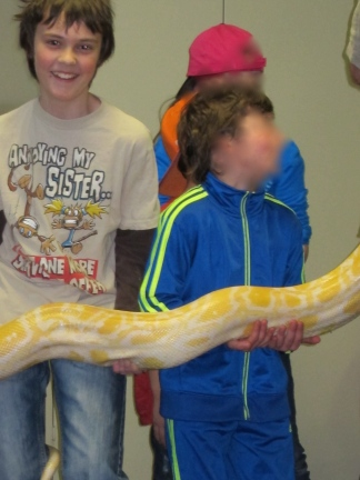 Thing 1 holding Crush the Albino Burmese Python.