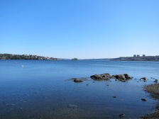 Bedford Basin is Beautiful.
