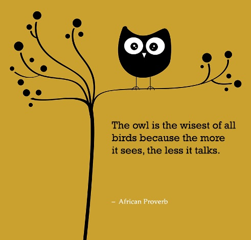 The-owl-is-the-wisest