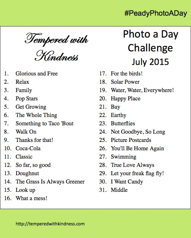 PhotoADay_July2015